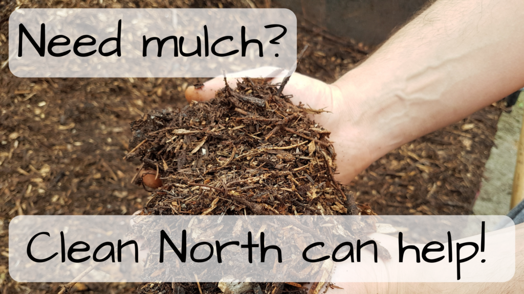 5a295c48862 Christmas tree mulch available to all on Saturday, May 25 | Clean North